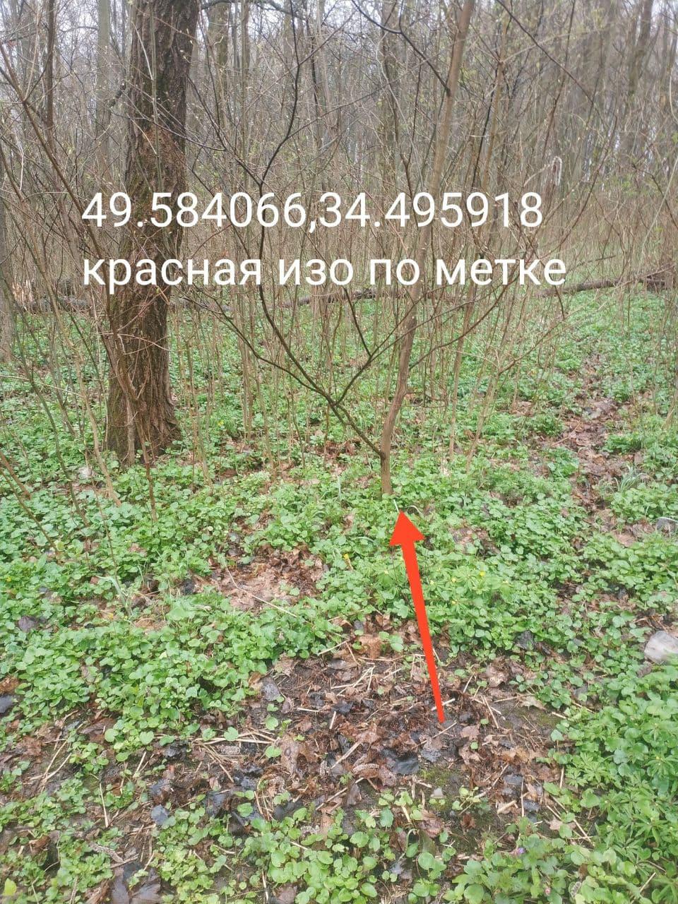 photo 2021 04 15 15 50 02